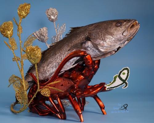 銀花魚 Corvina
